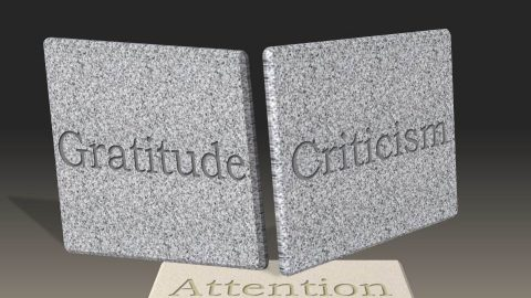 """Gratitude, Criticism and Attention — """"You Know What Your Problem Is?"""""""