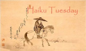 Haiku Tuesday Websize2