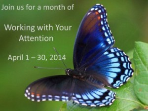 Working with Your Attention April 1 – April 30, 2014
