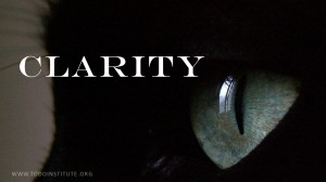 CLARITY GRAPHIC