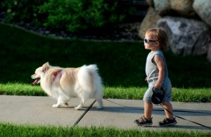 child_walking_dog small