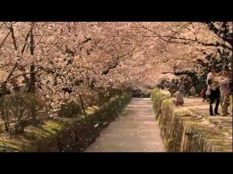 The Tsunami and the Cherry Blossom – Academy Award Nominated Film (Watch Trailer)