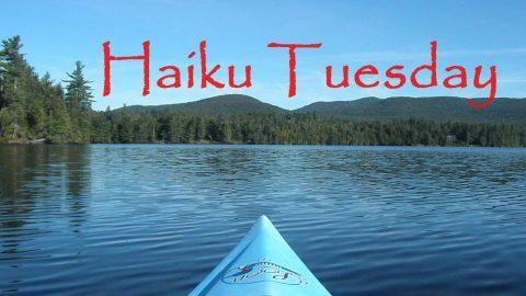 Haiku Tuesday (August 27, 2013)