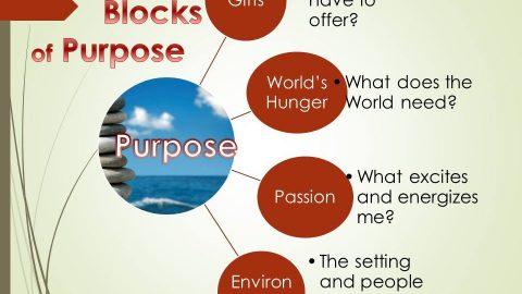 The Building Blocks of Purpose