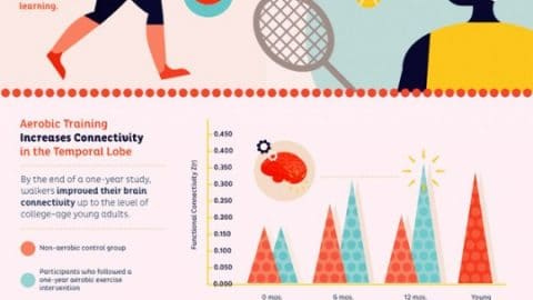 It's Better for Your Brain to be Working Out, Than Zoning Out