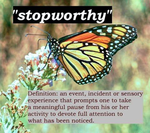 STOPWORTHY