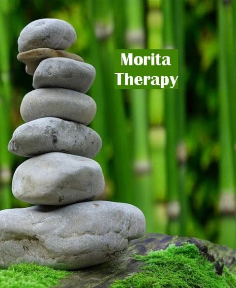 Key Elements of Morita Therapy